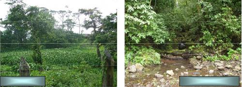 vendo extensa finca en nicaragua