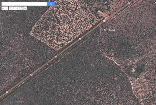 vendo fazenda sul piauí bom jesus pi, br135 2700 ha pecuária