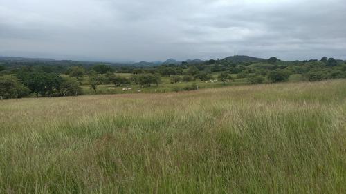 vendo finca 100 hectáreas guamo tolima