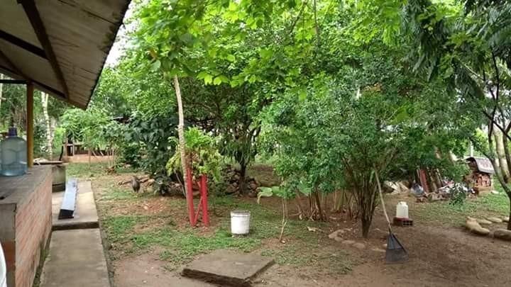 vendo finca de 3066m2, casa arboles frutales sobre via