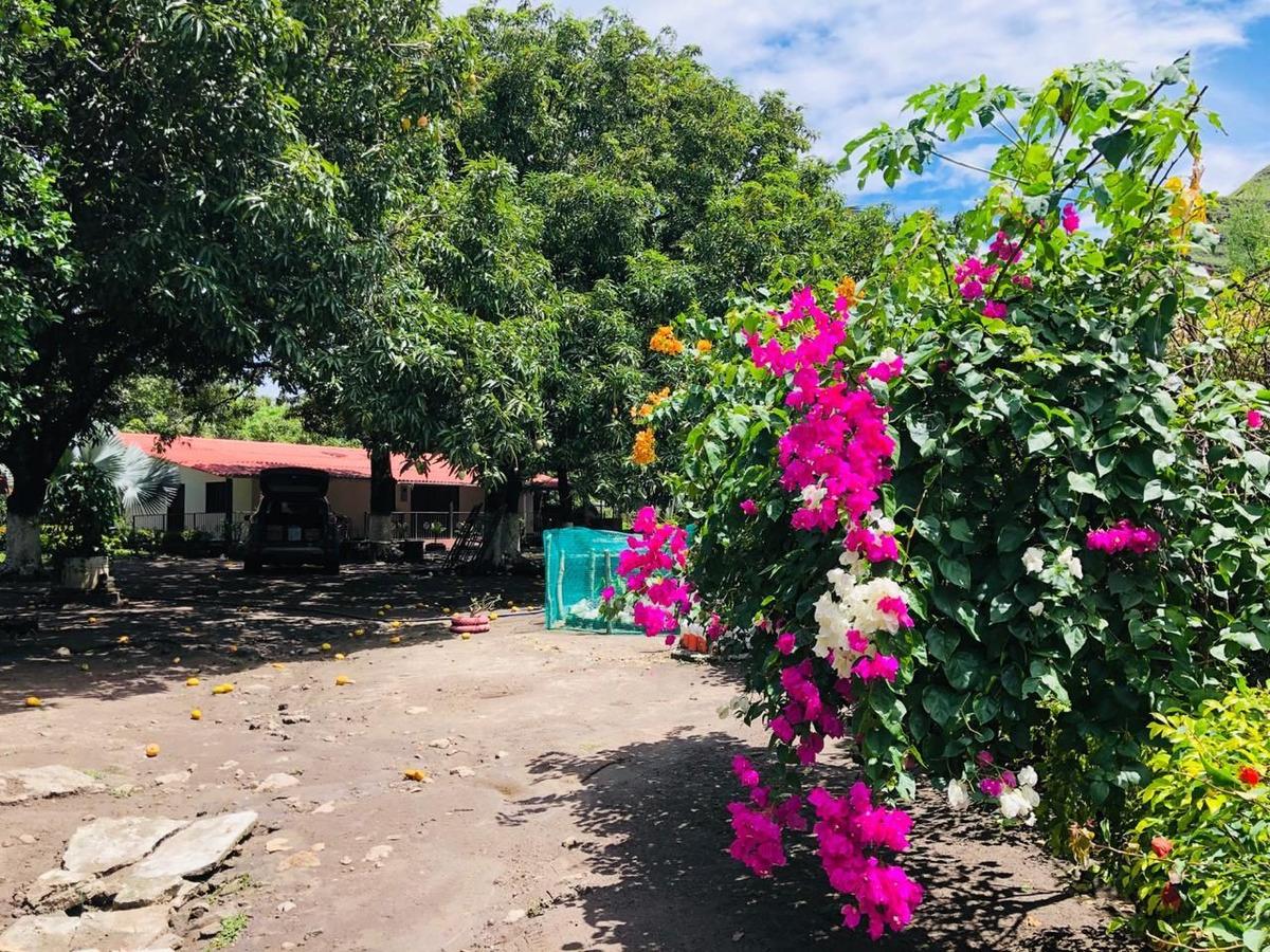 vendo finca sobre la zona urbana de gualanday
