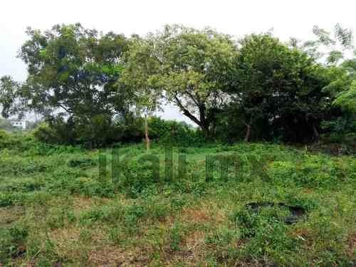 vendo hectárea colonia anáhuac tuxpan veracruz 1.16 has, se encuentran ubicadas a 5 minutos del centro de la ciudad, en la calle pedro moreno de la colonia anahuac, son 11,598 m², en 'l' para un frac