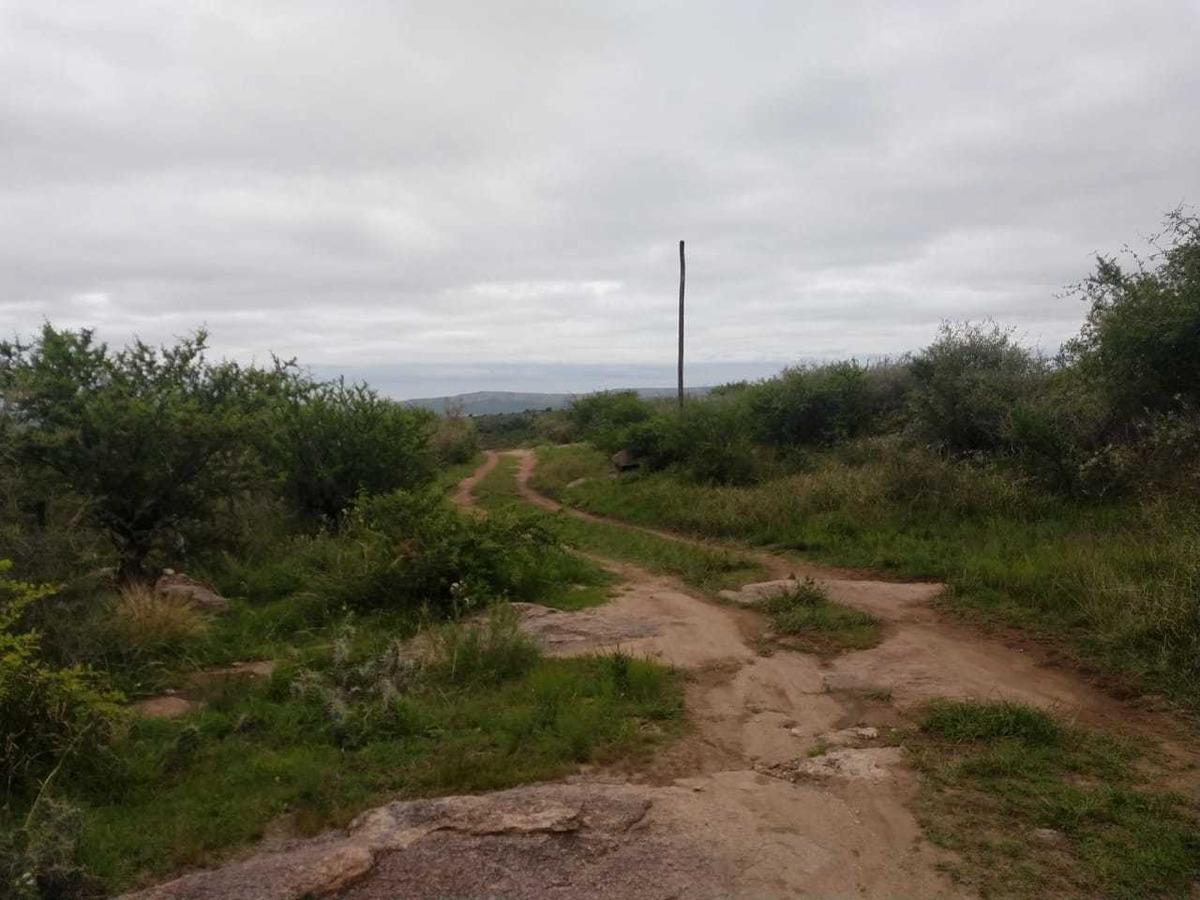 vendo hectarea  mina clavero