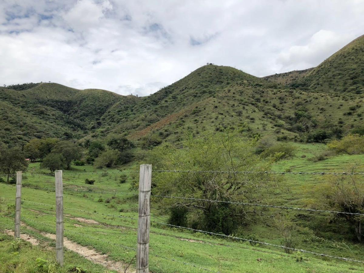 vendo hermosa finca ganadera cerca a toro valle