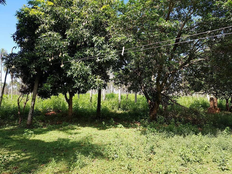 vendo hermosa propiedad de 3 hectareas  atyra cod 1002