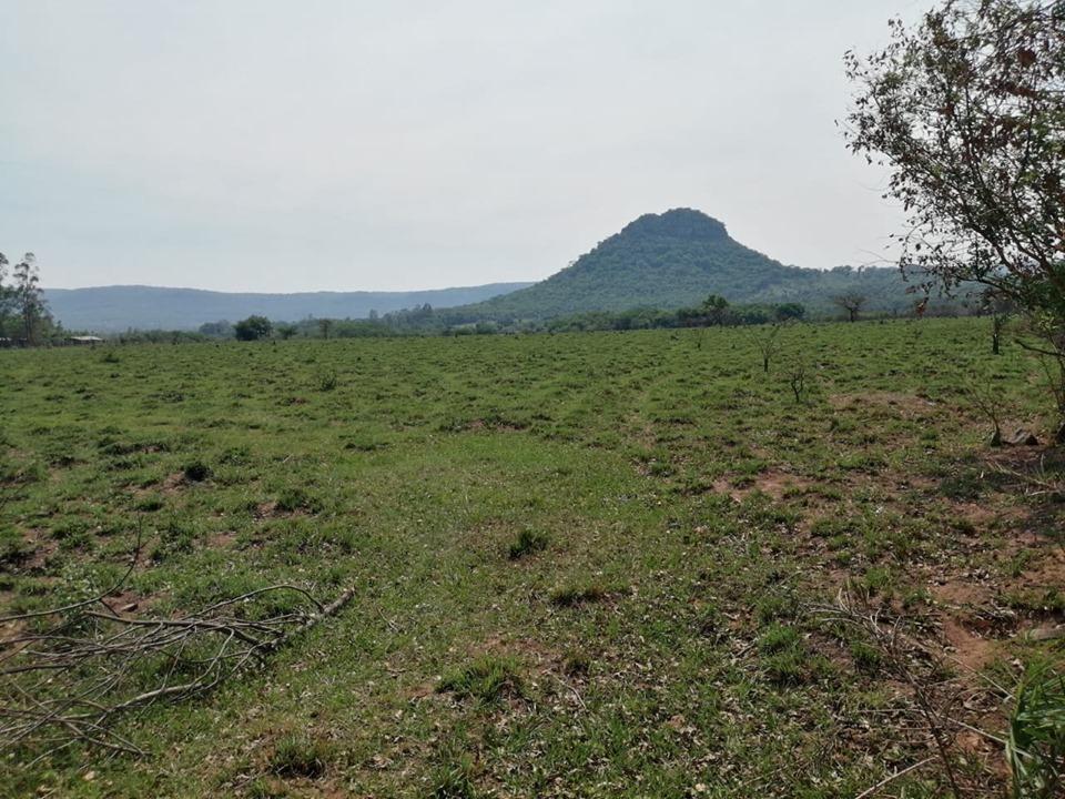 vendo hermosa propiedad de 8 hectareas en paraguari cod 2591