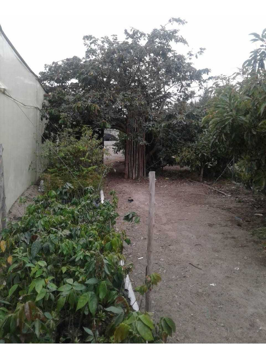 vendo hermosa propiedad en malchingui (negociable)