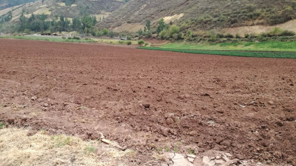 vendo hermoso terreno 4 hectáreas chicon urubamba cusco