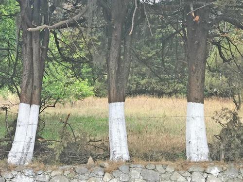 vendo hermoso terreno en omitlan frente a carretera federal