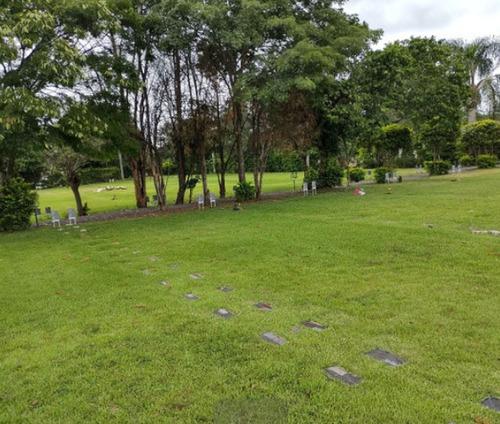 vendo jazigo com 1 gaveta, no cemitério memorial da colina.