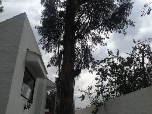 vendo la casa mas hermosa bosques de pino
