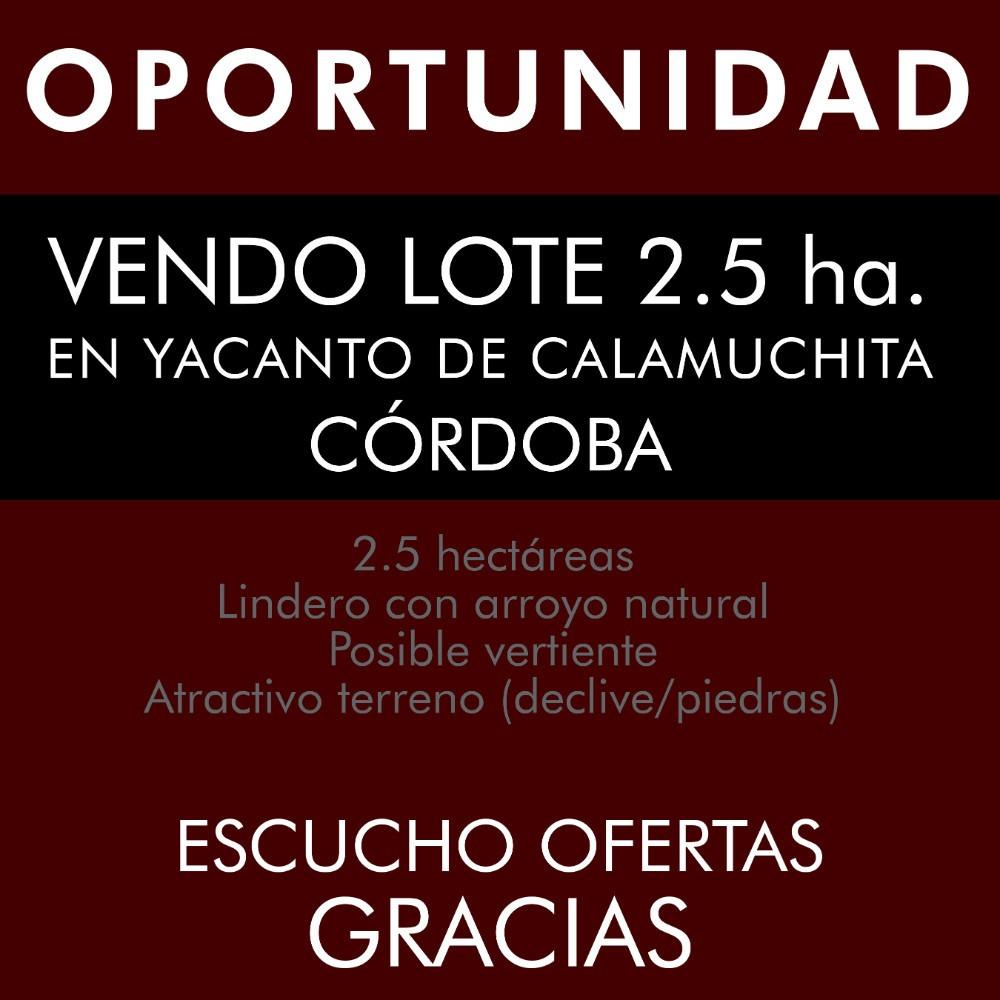 vendo lote 2.5 ha. en yacanto de calamuchita - córdoba