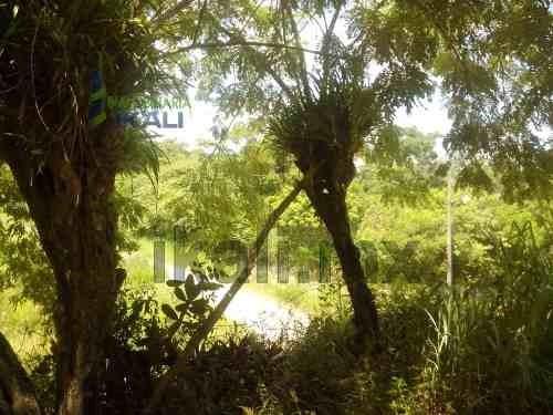 vendo lote de 150 m² camino a juan lucas tuxpan veracruz, se encuentra ubicado en el camino a juan lucas, cuentan con 150 m² son 10 de frente por 15 m de fondo, la zona cuenta con los servicios de ag