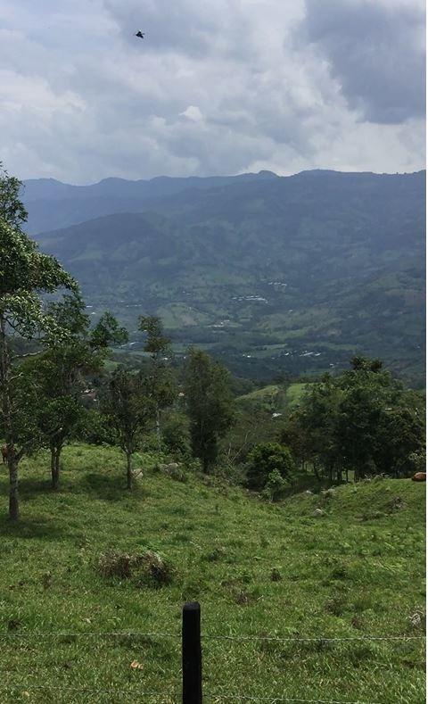 vendo lote guaduas 15 hectáreas. agua-agricultura-ganadería