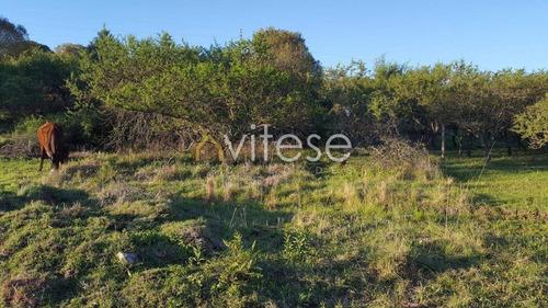 vendo lotes-terrenos villa del dique