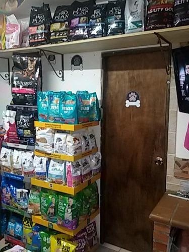 vendo negocio de mascotas acreditado barrio la pilarica