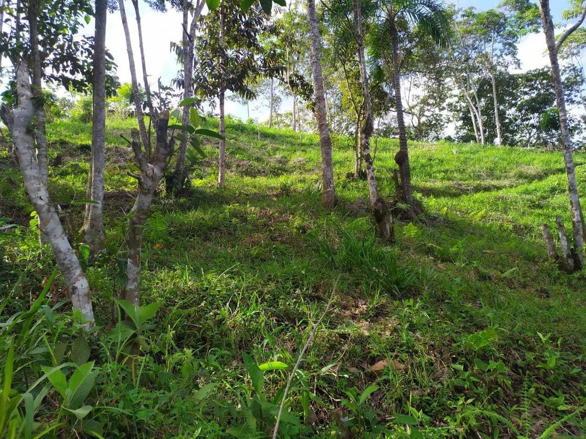 vendo o cambio hermoso lote de terreno en san rafael, ant.