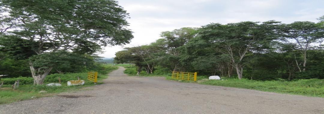 vendo o cambio terreno de 26 hectareas