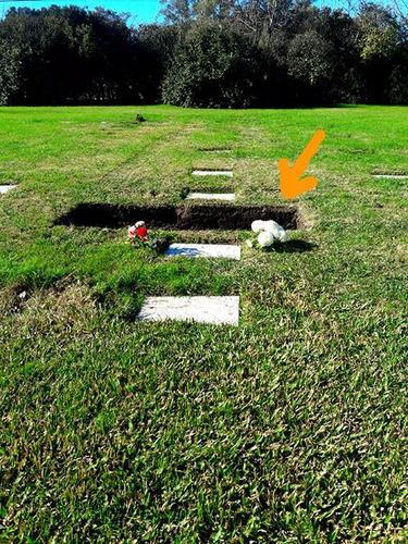 vendo parcela en cementerio campanario jardín de paz