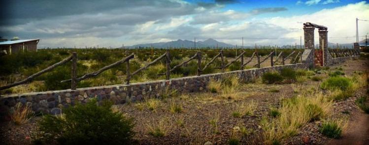 vendo / perm. lote 3500 mt.², camino a san alberto - mendoza