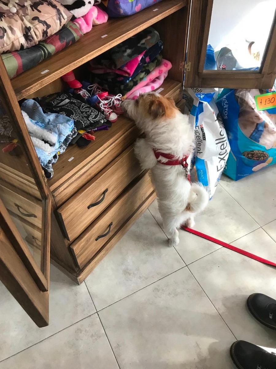 vendo pet shop y peluquería canina.