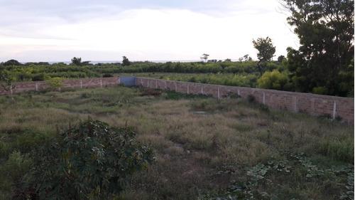 Etro en Venta en Terrenos en Pedernales en Mercado Libre República  Dominicana