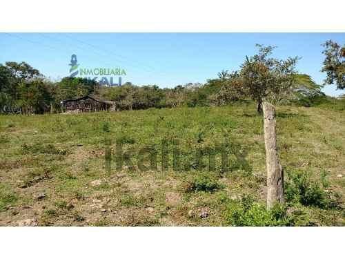 vendo rancho ganadero temapache veracruz 223 hectáreas, ubicadas en la carretera a tampico en el km 40 desde tuxpan veracruz, 4 km. antes de potrero del llano veracruz, tiene 1 kilómetro de frente a