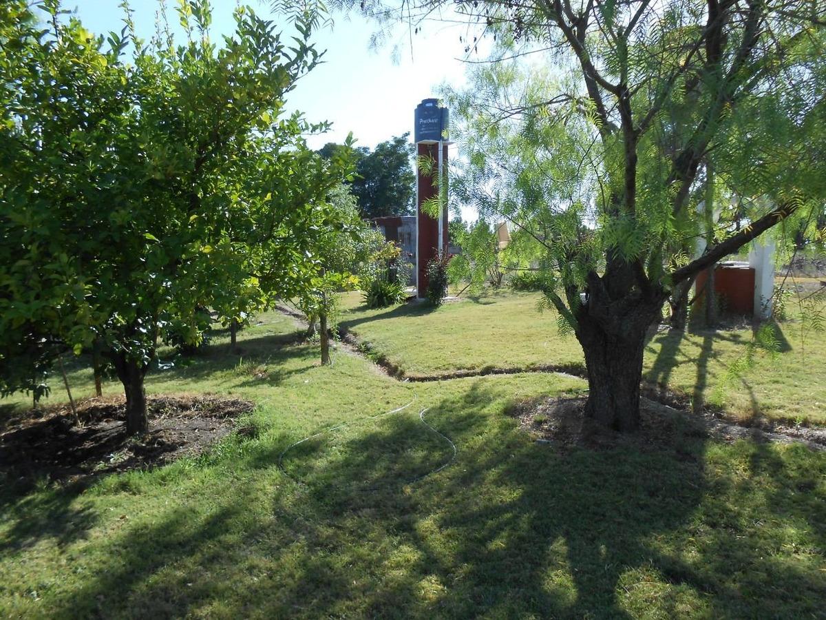 vendo sauce 2,5 has con 2 b/casas hermoso parque  30 km mont