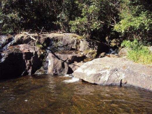 vendo sitio com cachoeira em paraibuna (4082)