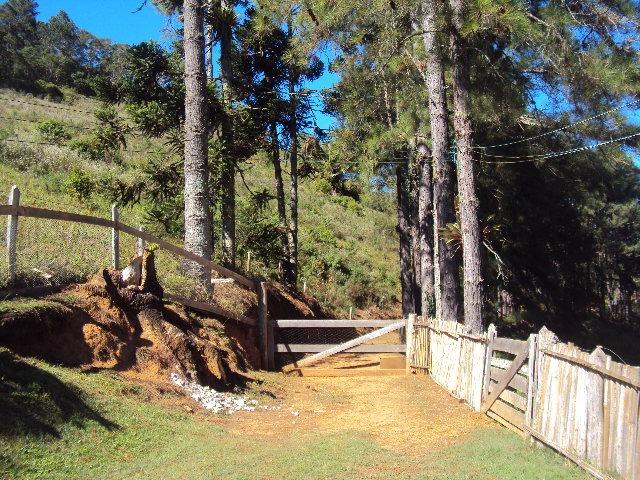 vendo sitio com cachoeira na porta de casa serra do mar(4175