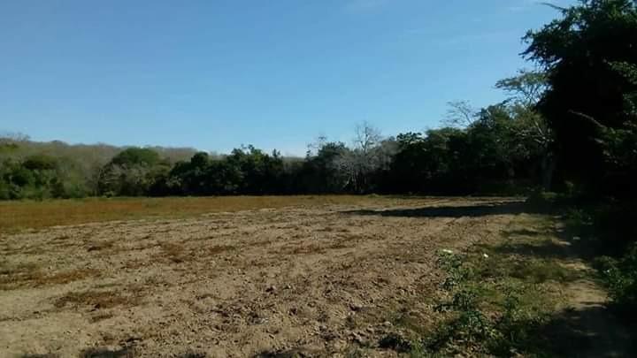 vendo terreno 20 hectáreas precio de remate