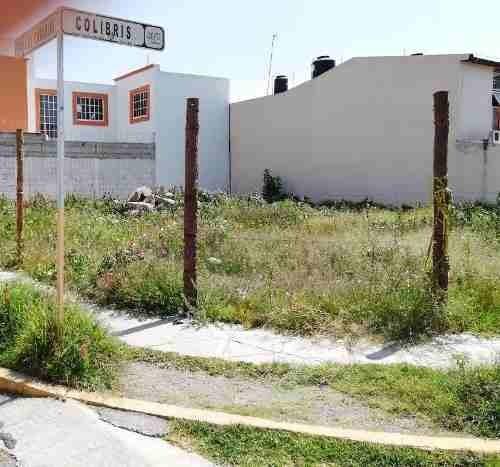 vendo terreno 244m2 esq los canarios, villas d pachuca