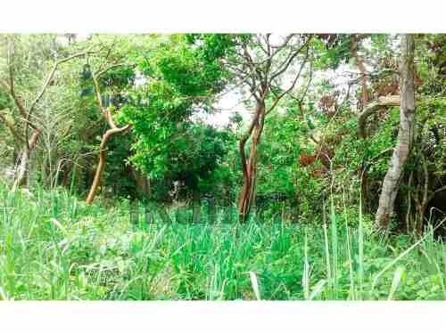 vendo terreno 450 m² en carretera a juana moza, se encuentra ubicado en la carretera a juana moza en la colonia las flores, cuenta con 450 m² de terreno, son 15 m. de frente y 30 m. de fondo, el tipo