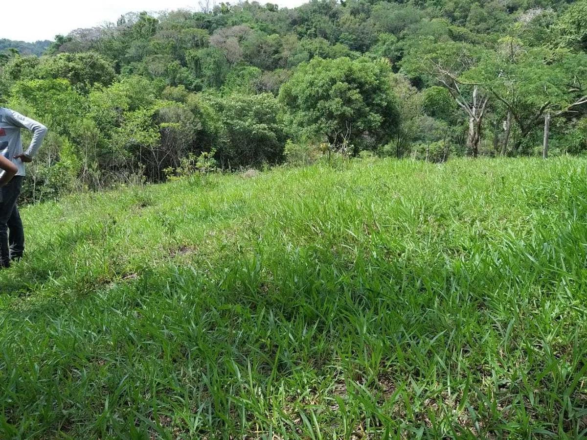 vendo terreno de 1000 m2 por r$ 40.000,00