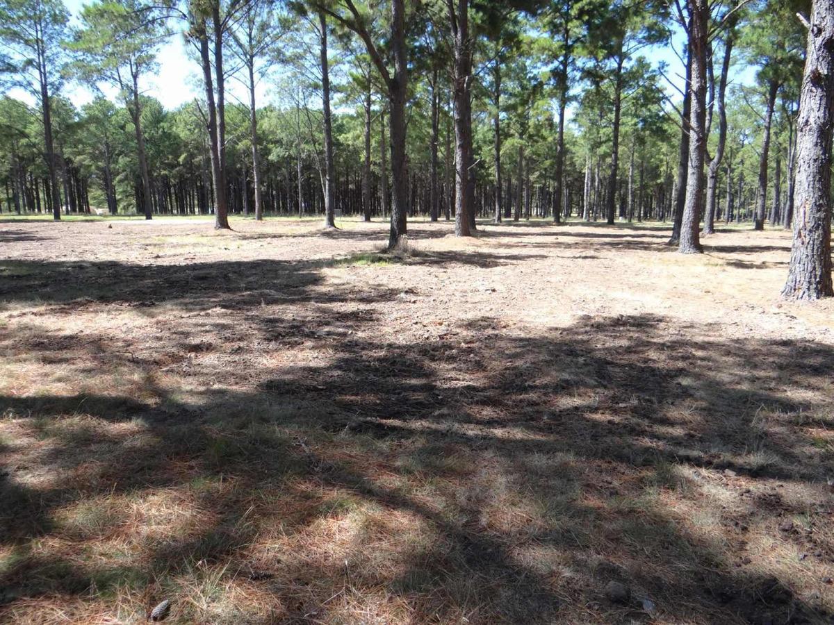 vendo terreno de 2024mts en chacras del pinar