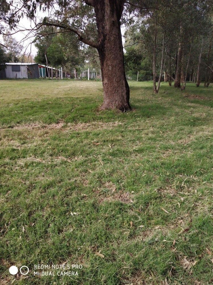 vendo terreno de 432 m2 lado sur, árboles a 2 de interb!!!!!