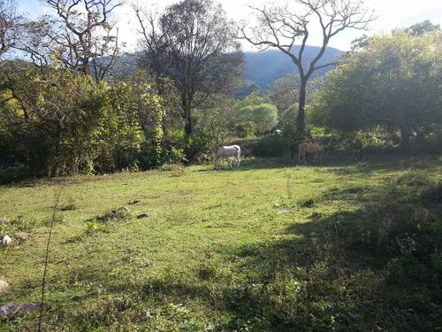 vendo terreno en castellanos (san lorenzo)