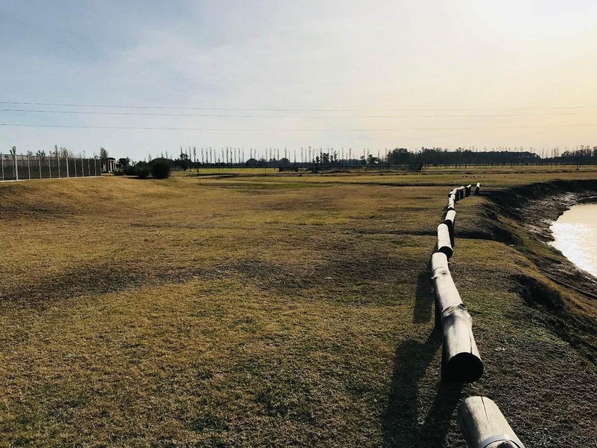 vendo terreno en haras de funes - barrio de campo