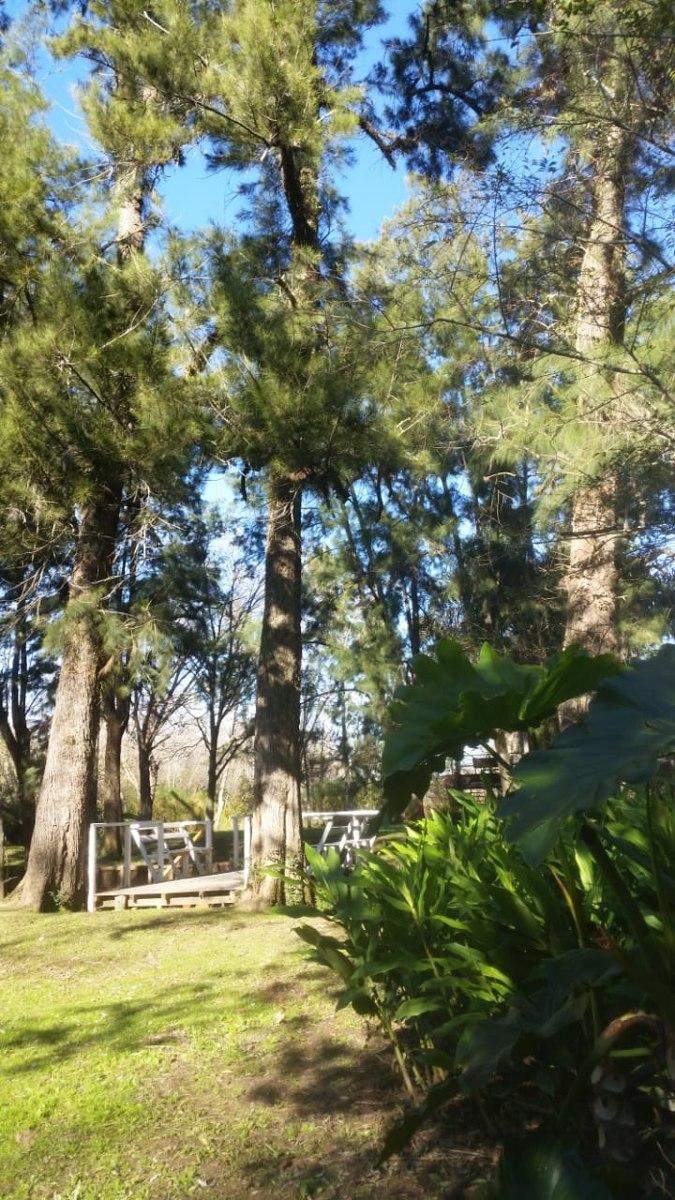 vendo terreno en la isla de tigre arroyo boraso