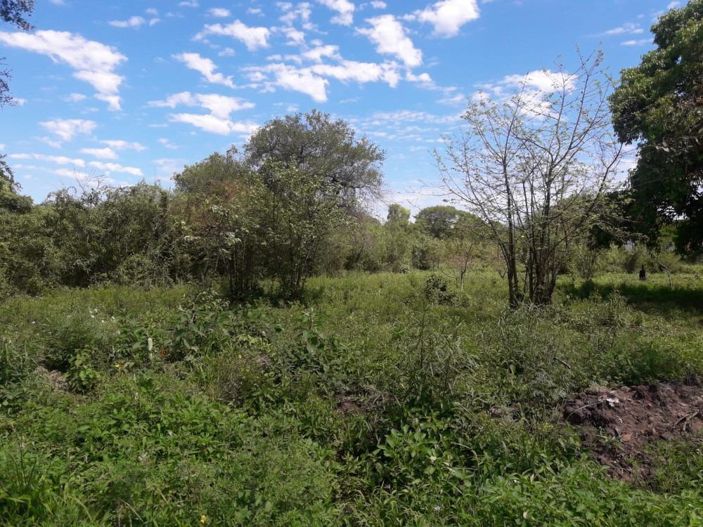 vendo terreno en limpio zona abasto norte superficie 900 m2