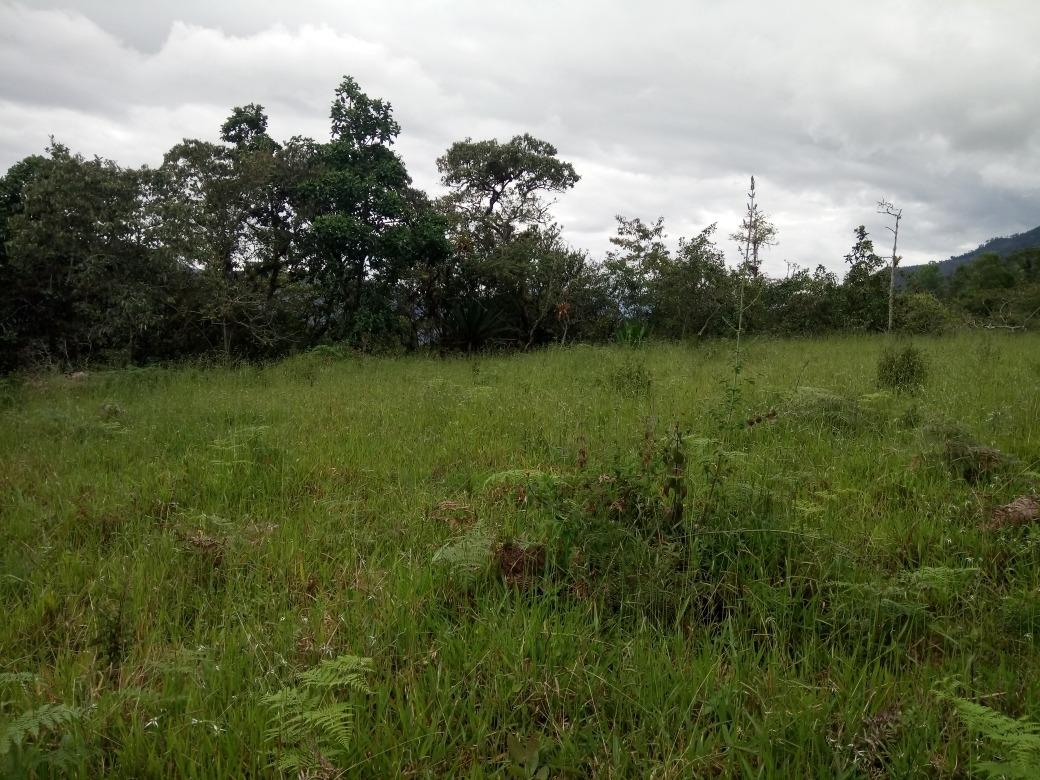 vendo terreno en somondoco, boyaca 14 mil m2