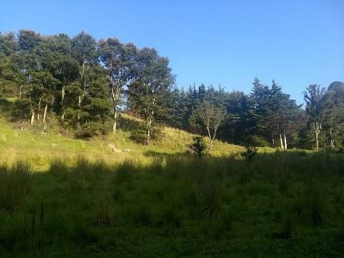 vendo terreno en villa cuahutemoc. edo. mexico