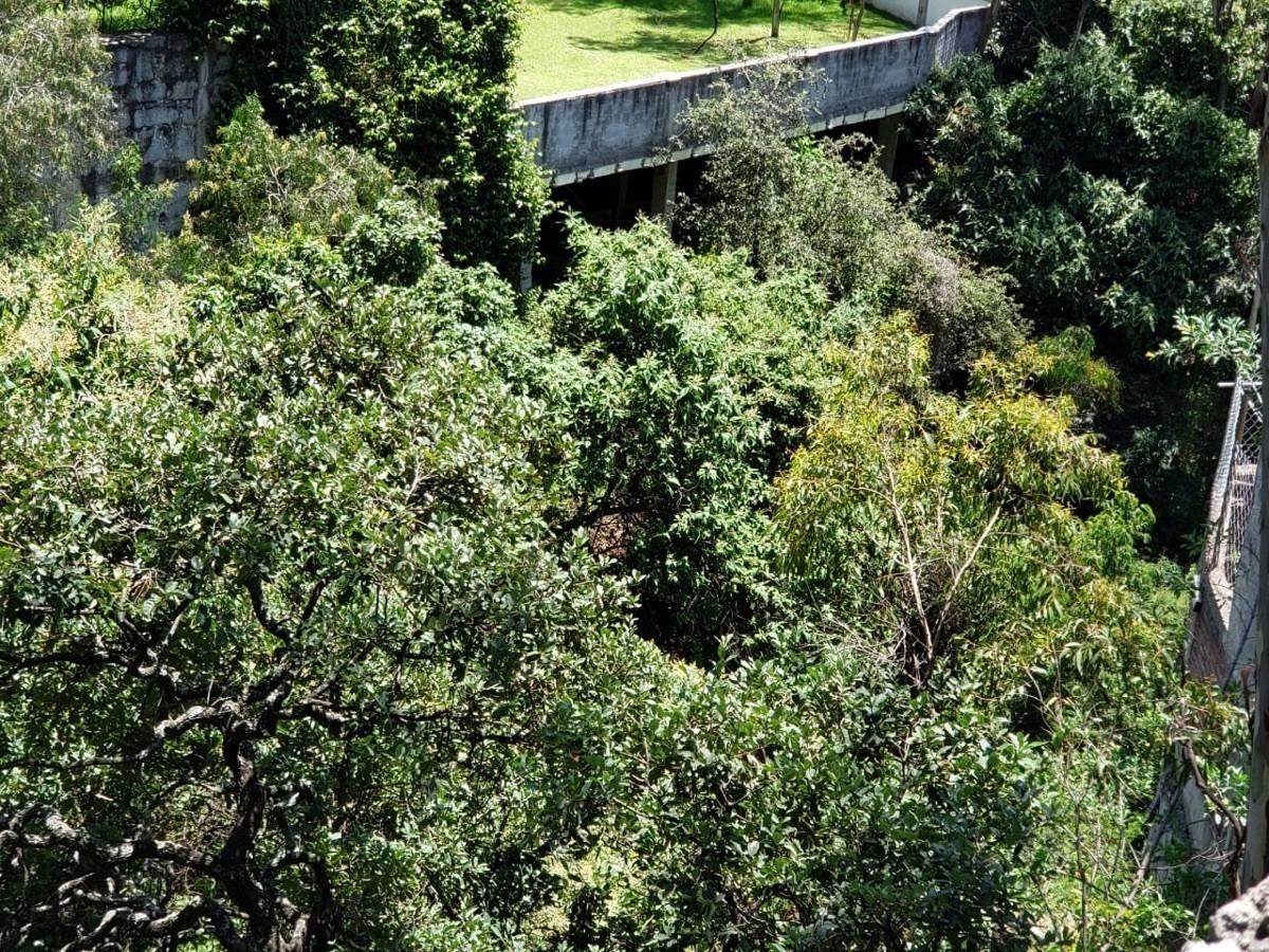 vendo terreno habitacional  paseos del bosque-villa de la yerbabuena-