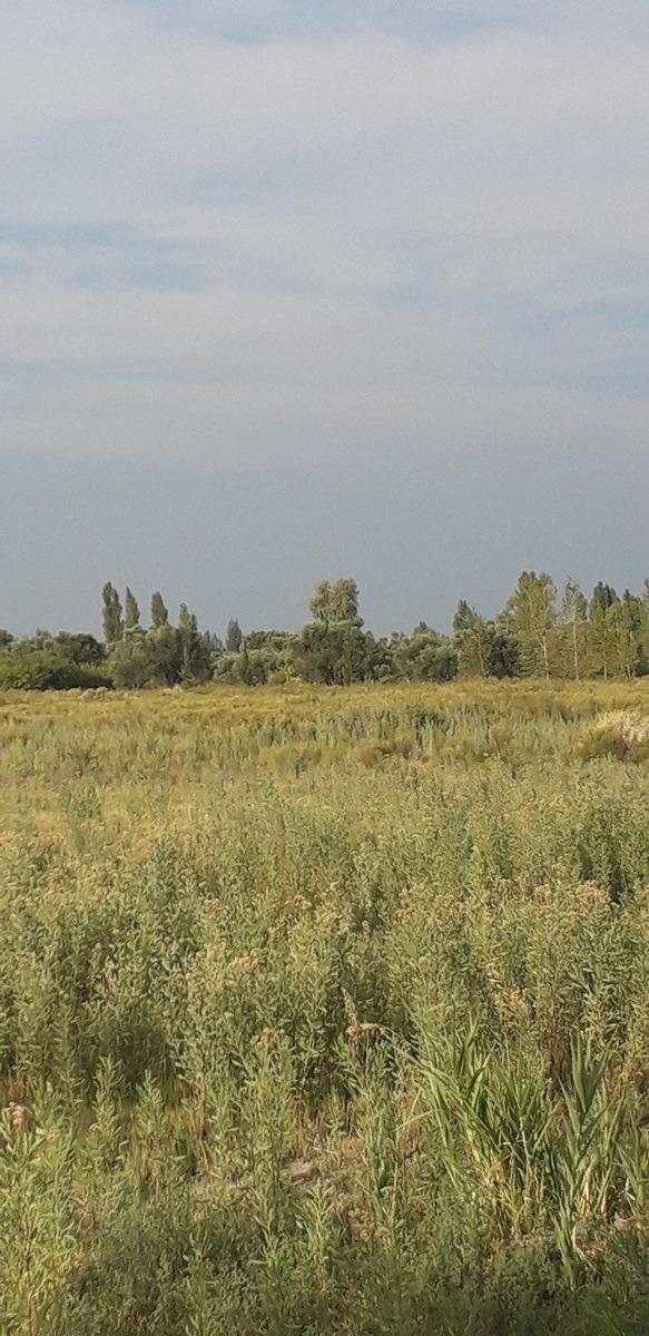 vendo terreno inmaculado en interseccion ruta 160 y 165 san rafael mendoza