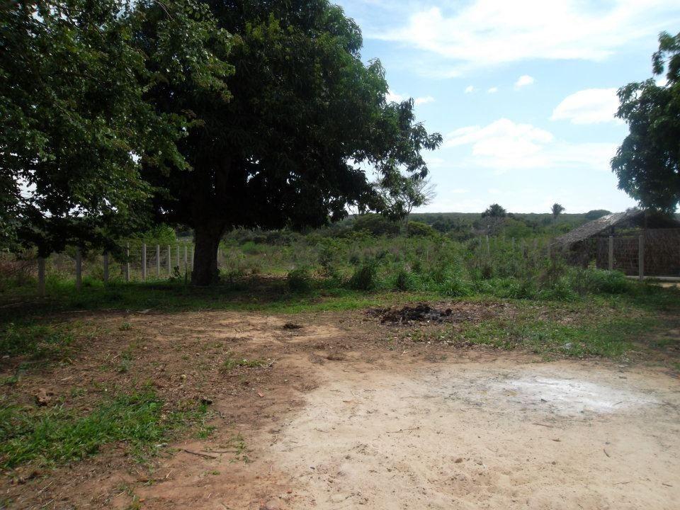 vendo terreno para chácara, pousada, rancho, etc. ubajara ce
