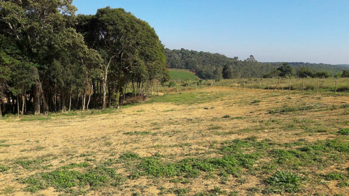 vendo terrenos demarcados pronto para construir com portaria