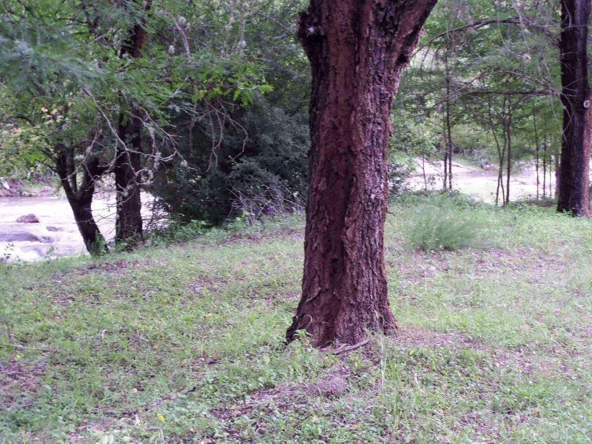 vendo terrenos, loteo arbolado c/ río propio en casa grande