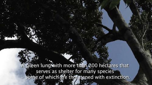 vendo tierras para proyecto ecoturistico
