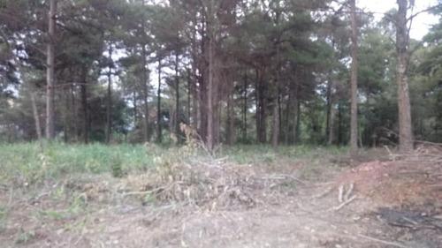 vendo um terreno com 1000m² proximo a raposo tavares!!! j.v