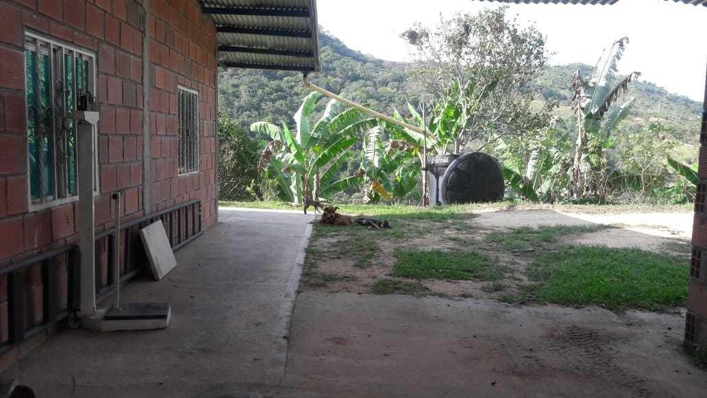 vendo,permuto finca en rionegro santander, de 5 hectáreas